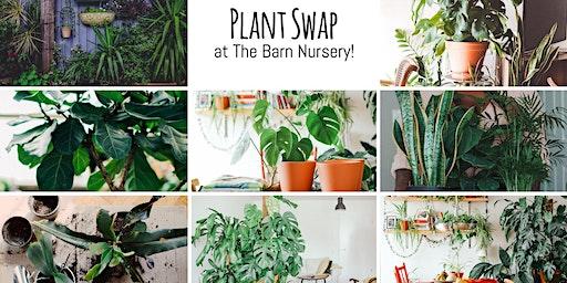 House Plant Swap at The Barn Nursery