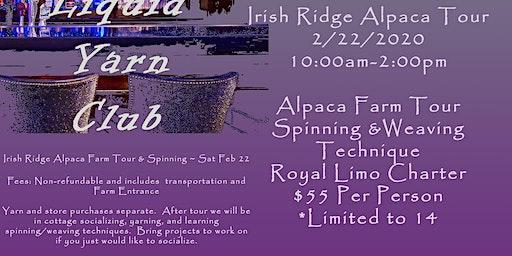 Liquid Yarn Club Irish Ridge Alpaca Outing