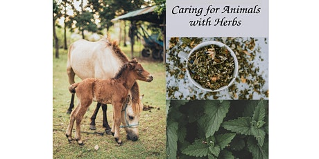Caring for Animals with Herbs tickets