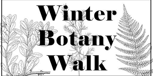 Winter Botany Walk