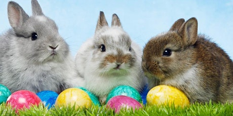 Brunch with the Easter Bunny! tickets