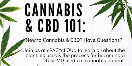 Cannabis & CBD 101 tickets