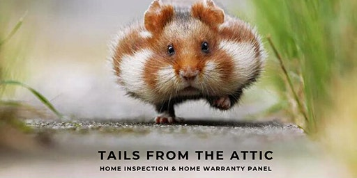 Tails from the Attic
