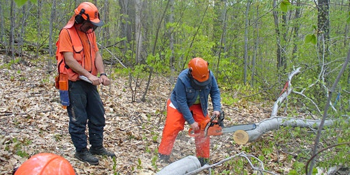 Basic Chainsaw Use & Safety for Beginners, April 14 (Tuesday), 2020