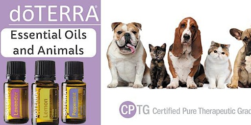 Animals and Pets and Essential Oils