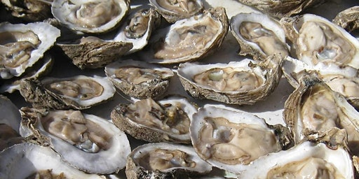 2nd Annual Oyster Roast & Square Dance