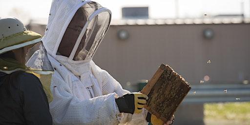 Bedford  Beekeepers Bee Intensive VII