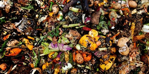 Composting for Families