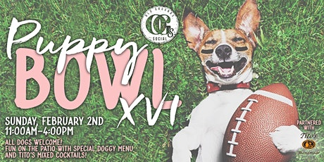 Puppy Bowl Party at OGs! tickets