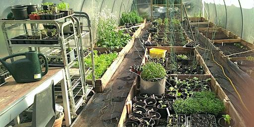 Sow Grow Harvest Eat