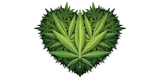 2020 Conscious Cannabis Circle with Medicinal Mindfulness