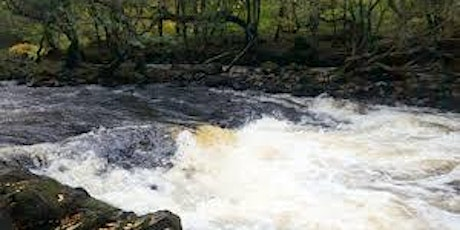 CAP's Dartmoor - Introduction to Whitewater Paddlers Weekend tickets