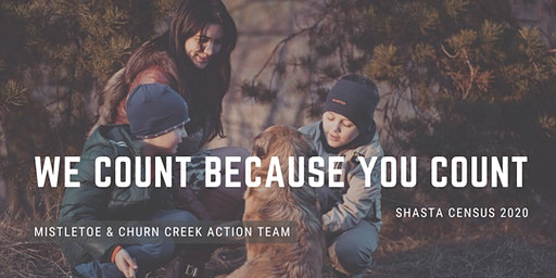 Shasta Complete Count Action Teams - Mistletoe & South Churn Creek