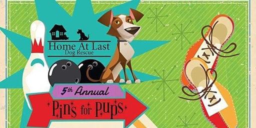 5th Annual Pins for Pups
