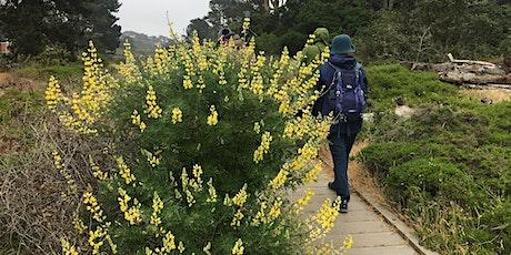 Field Trip - Lobos Creek Valley, Presidio of San Francisco tickets
