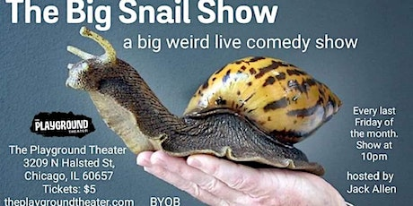 The Big Snail Show - A Big Weird Live Comedy Show tickets