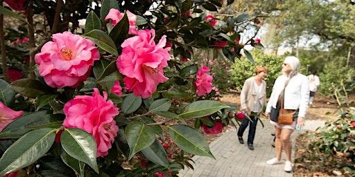 Tour UWF Camellia Garden 12:00pm - 4:00pm