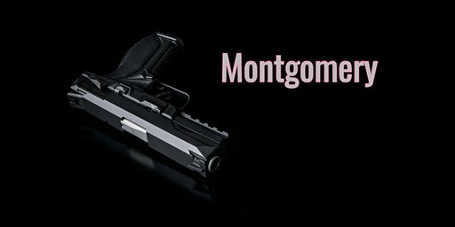 Conceal Carry Class Plus Free Friend Montgomery Al 2/22 1pm