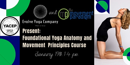 Foundational Yoga Anatomy and Movement Principles