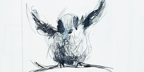 Gestural Drawing - Birds and other Creatures tickets