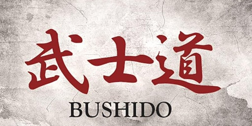 Bushido Amateur MMA 2