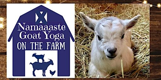 Goat Yoga on the Farm: Namaaaste Goat Yoga