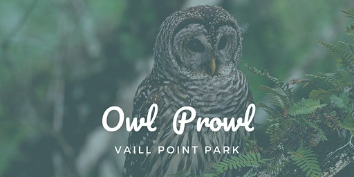 Owl Prowl ~ Vaill Point Park