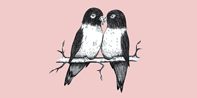Songbirds & Lovebirds