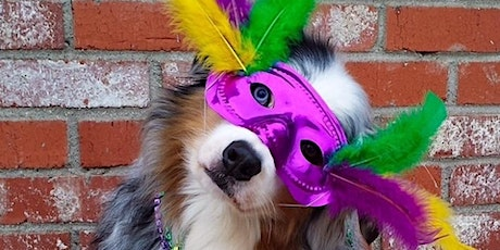 Mystic Krewe of Salty Paws Pet Parade tickets