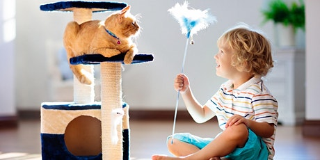 Are you sure these Pet Toys you are selling are safe to use?  tickets