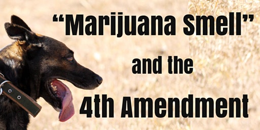 Cannabis Smell and the Fourth Amendment