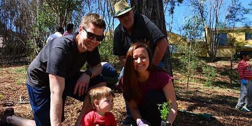 Community Tree Planting Event