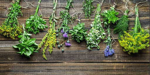 Understanding Herbs and Spices 101