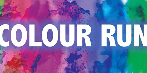 Hatherleigh Colour Run 2020
