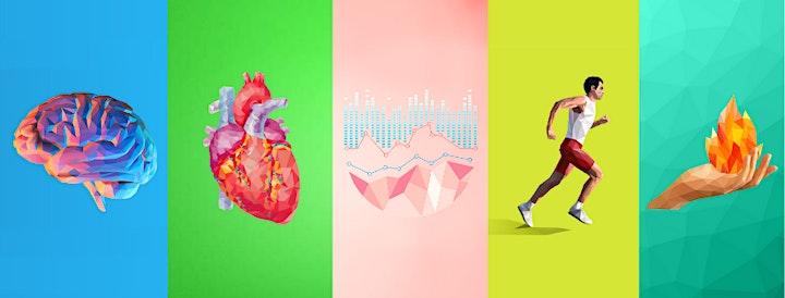 Imagen de BIOREGENERACIÓN: Claves metabólicas para la potencia y la longevidad.