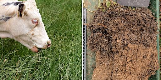 Soil Health & Regenerative Agriculture for Livestock - Part 1/Intro