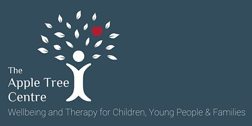 Non-Directive Play Therapy: Principles and Practice 2020