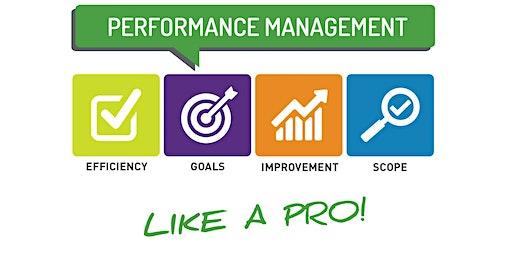 Performance Mange Like A Pro