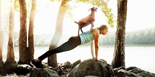 Goat Yoga 2020