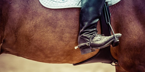64th Annual Golden Gate Arabian & All Breed Horse Show - Equestrian