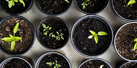 Cultivating Resilience in Resistance with Gardening tickets