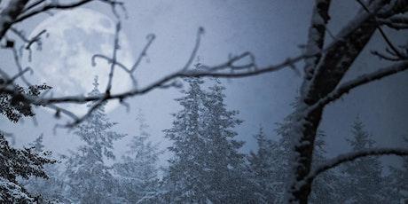 Wintery Owl Walk in the Ravine tickets