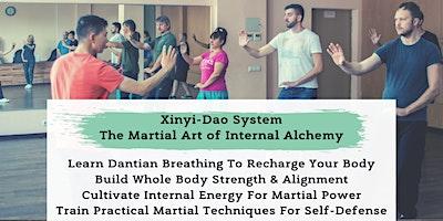 Xinyi-Dao Internal Alchemy Meditation & Martial Ar