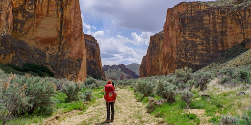 Oregon Desert Backpack (Section 25: Owyhee Dam to Leslie Gulch)