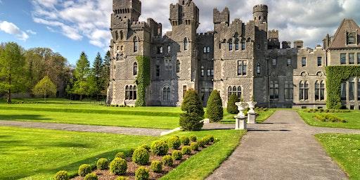 Shamrock Kingdom: St. Patrick's Festival