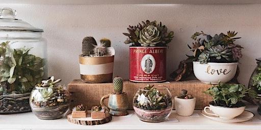 DIY Succulent Terrarium Workshop