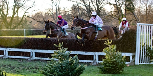 Jedforest Point to Point Races
