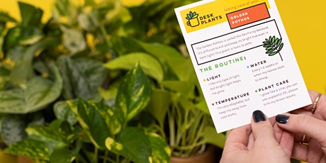 How Not to Kill Your Plants Plant Workshop tickets
