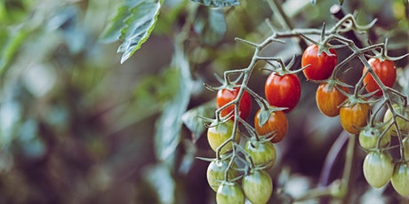 Food Forward Presents: Creative Home Farming with Joanna Bassi tickets