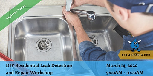 D.I.Y Residential Leak Detection and Repair Workshop